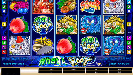 What a Hoot Online Video Slot